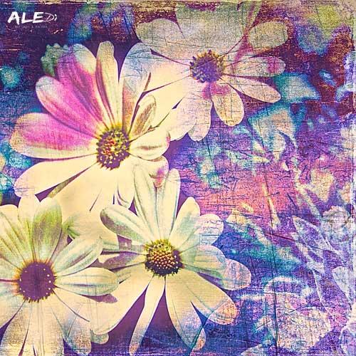 fioricelesti